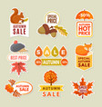 labels and badges of autumn discount stickers vector image vector image