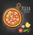mushroom pizza vector image