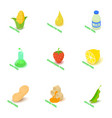 vitamin food icons set isometric style vector image vector image