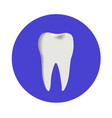 teeth icon dentist flat sign or symbol for vector image