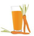 Carrot Juice vector image vector image