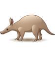 cartoon aardvark isolated on white background vector image