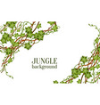 decorative tropical jungle lianas vine banner the vector image vector image