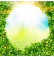 Green leaves surrounding spring sunshine vector image vector image