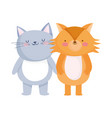 little cat and fox cartoon character on white vector image
