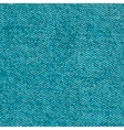 Seamless jeans texture vector image vector image