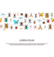 flat icons insects background or banner vector image