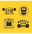 Gym badges vector image