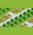 park city with trees lawns vector image vector image