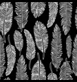 seamless pattern of feathers vector image vector image
