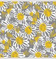 sketch style daisy flower seamless pattern vector image vector image