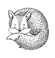 the sleeping fox cartoon fox on white background vector image