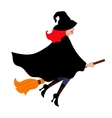 Halloween witch isolated on white vector image