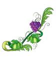 A vine fruit vector image vector image