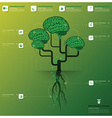 Brain Tree And Root Infographic Design Template vector image