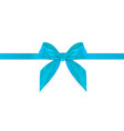 decorative blue bow with blue ribbon isolated on vector image vector image