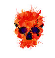 Skull made colorful splashes