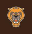 tiger head image vector image vector image