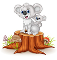 Cartoon baby Koala on Mother Back on tree stump vector image vector image