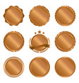 collection of modern bronze circle metal badges vector image