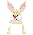 cute rabbit cartoon posing with blank sign vector image