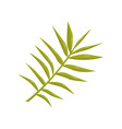 flat icon of thin stalk with small leaves vector image