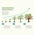 infographic planting tree seeds sprout in vector image vector image