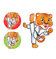 Karate Tiger vector image