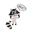 little raccoon character unpleasantly surprised vector image