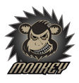 Monkey logo team professional logo vector image