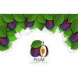 paper cut ripe plum fruit background frame vector image vector image