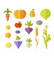 Set of Fruits Vegetables vector image vector image