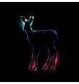 Shining deer vector image vector image