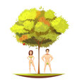 Adam Eve Under Apple Tree Cartoon vector image
