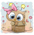 cute owl in a box vector image vector image