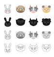 different kinds of animals muzzle of a hare an vector image