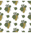 grape vine and leaf icons seamless wallpaper wine vector image vector image