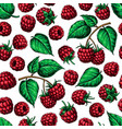 raspberry seamless pattern drawing vector image vector image