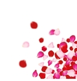 Rose petals falling background For presentations