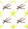 Seamless watercolor pattern with vanilla flower vector image