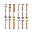 set of stainless steel bolts copper and bronze vector image vector image
