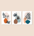 botanical abstract wall art collection with lives