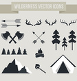 Camping Elements vector image vector image