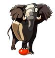 cartoon elephant with a ball vector image