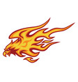 eagle fire head flame logo template design vector image vector image