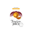 fresh pressed natural tangerine juice background vector image