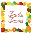 Fruits flat frame vector image vector image