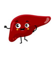 human liver cute cartoon character vector image