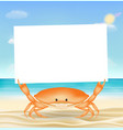 sea crab with white paper on a sea sand beach vector image vector image