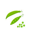 set two pods green peas isolated on white vector image vector image